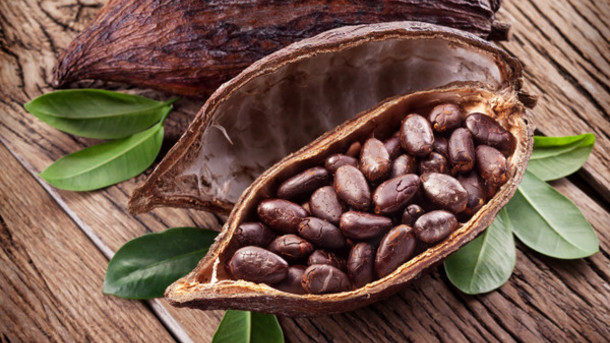 Government of Ghana increases cocoa price, bonus |Business