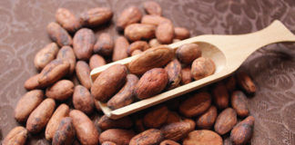 COCOBOD explores Chinese market